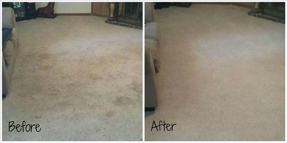 Carpet Cleaning Residential Commercial Pet Stain Removal Knoxville Tn