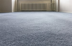 knoxville-carpet-cleaning