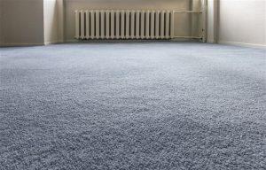 clean floor carpet