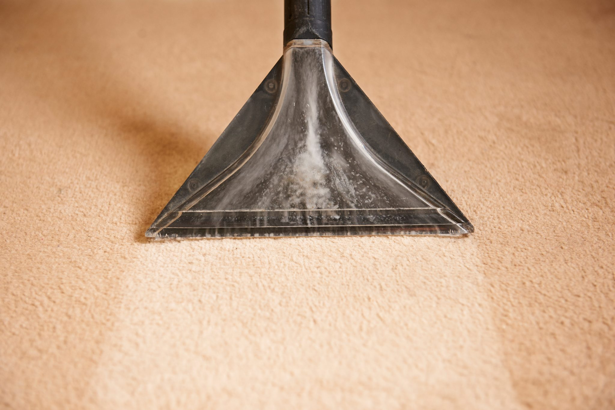 Keep Your Carpet Looking Its Best