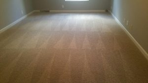 regular carpet cleaning