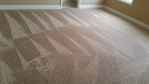 Carpet Cleaning Care Knoxville