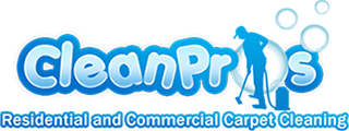 clean pros logo clear background