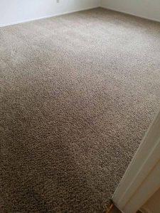 carpet shedding